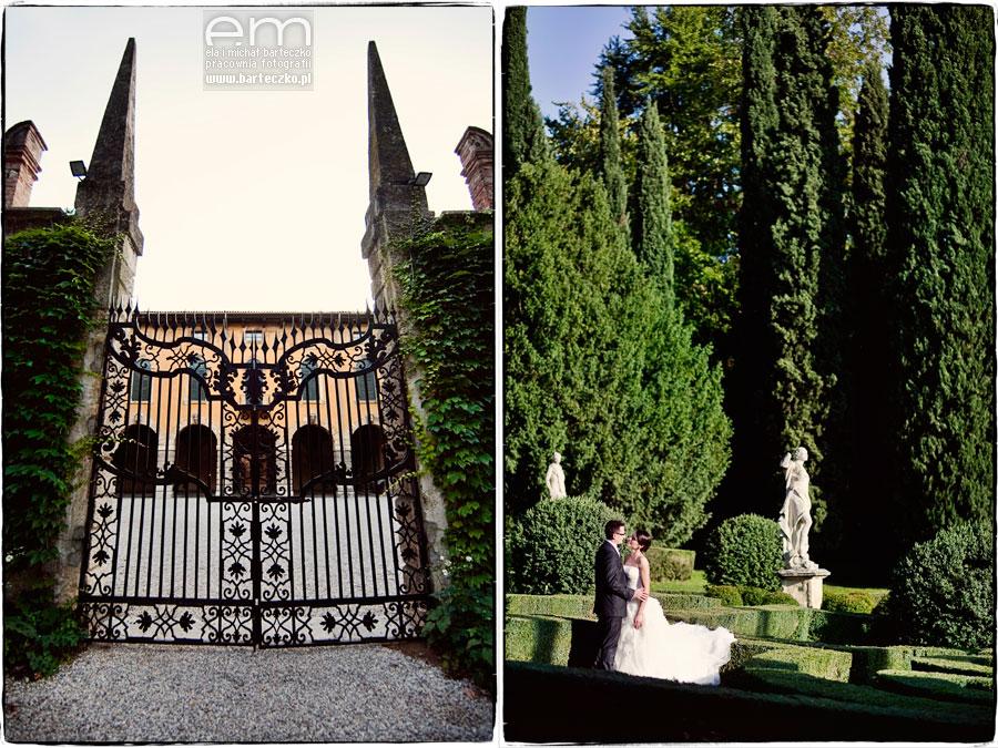 Verona's garden